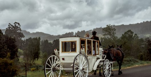 Castle Phoenix Carriage Tour